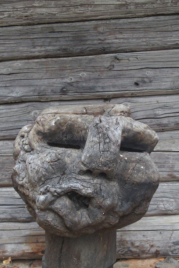 Un morceau de bois ressemblant ? une t?te humaine image stock
