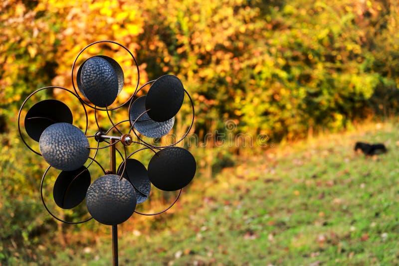 Un moulin à vent et un teckel miniature un matin parfait de chute marchent photographie stock