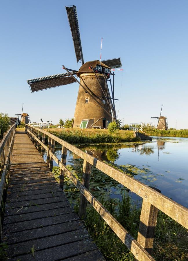 Un moulin à vent sur la banque d'un canal avec des roseaux dans Kinderdijk Hollande, Pays-Bas photos libres de droits
