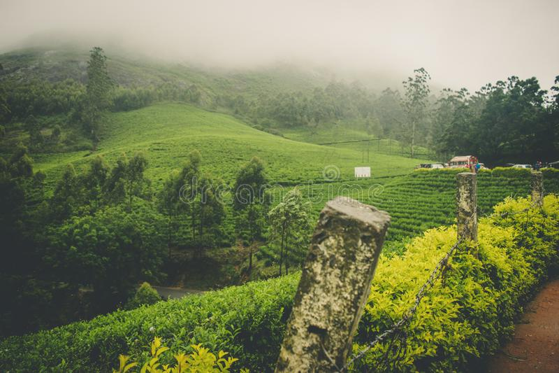 Un Mountain View nebbioso con bello greenary fotografia stock libera da diritti