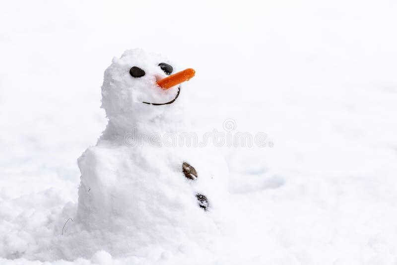 Un muñeco de nieve divertido muy pequeño con la zanahoria como nariz foto de archivo
