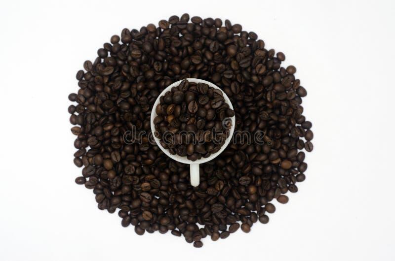 Un mucchio dei chicchi di caffè in tazza di caffè e nel fondo anche nel fondo bianco isolato immagine stock
