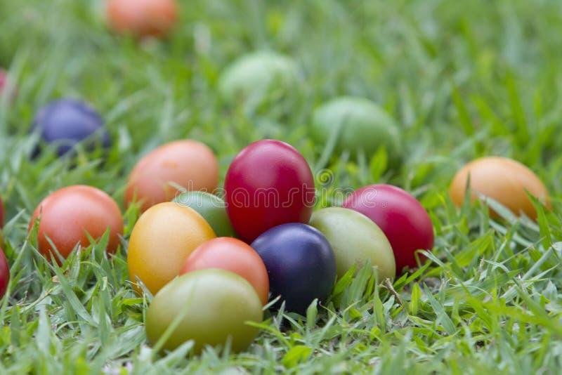 Un mucchio delle uova dipinte nell'erba fotografia stock libera da diritti