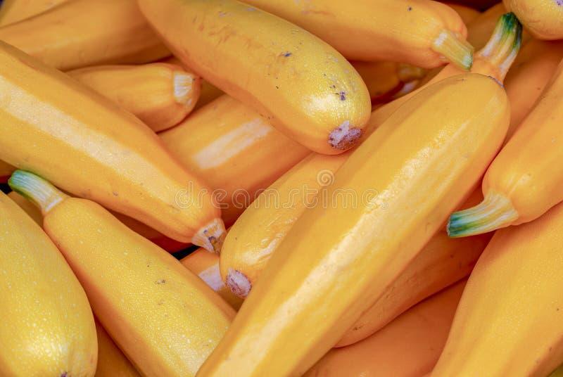 Un mucchio dello zucchini dorato fotografia stock libera da diritti