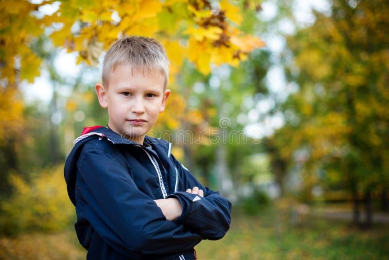 Un muchacho del aspecto europeo en el parque Fondo borroso amarillo con el bokeh D?a del oto?o imagen de archivo