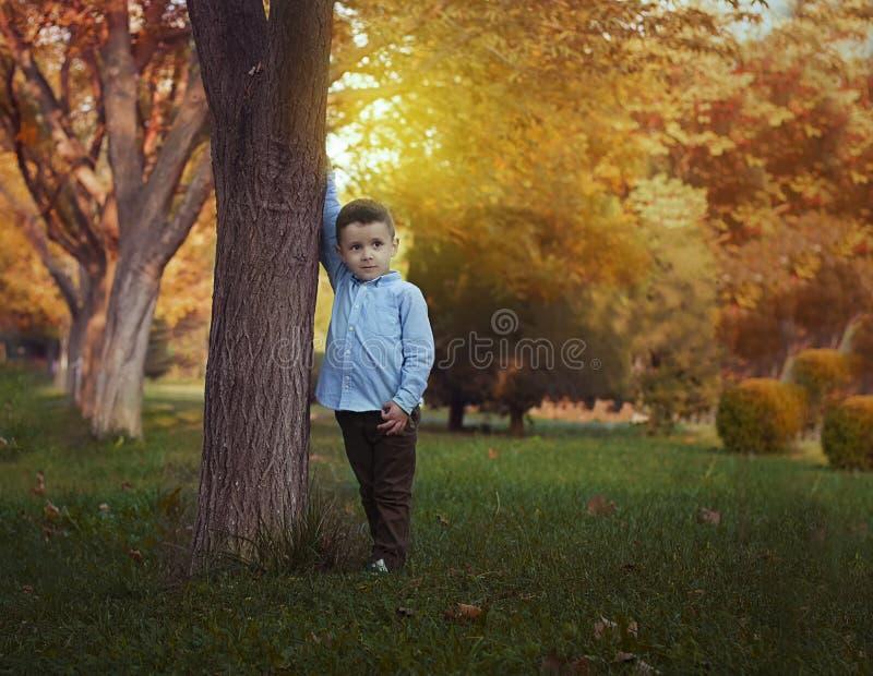 Un muchacho en la naturaleza fotos de archivo