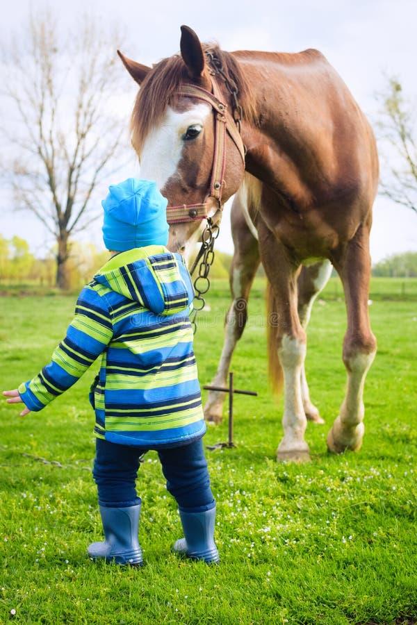 Un muchacho en los gumboots que juegan con un caballo imagenes de archivo
