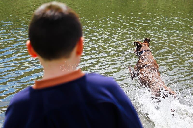 Un muchacho que mira su perro el jugar en el agua imagenes de archivo
