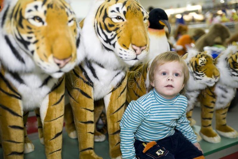 Un muchacho y un tigre imagen de archivo libre de regalías