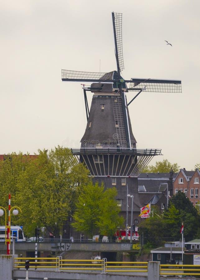 Un mulino a vento a Amsterdam, Paesi Bassi immagine stock libera da diritti