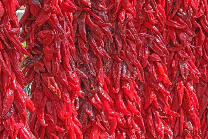 Un mur de Chili Ristras rouge images libres de droits