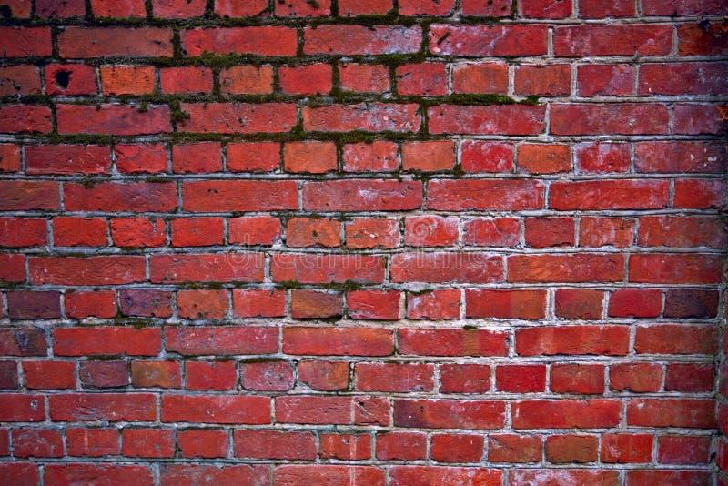 Un muro di mattoni rosso-bianco immagine stock libera da diritti