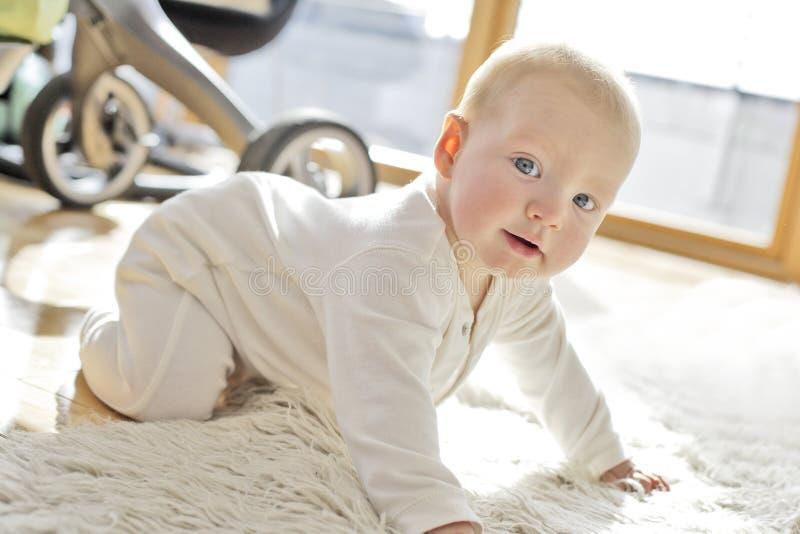 un neonato di 6 mesi fotografie stock