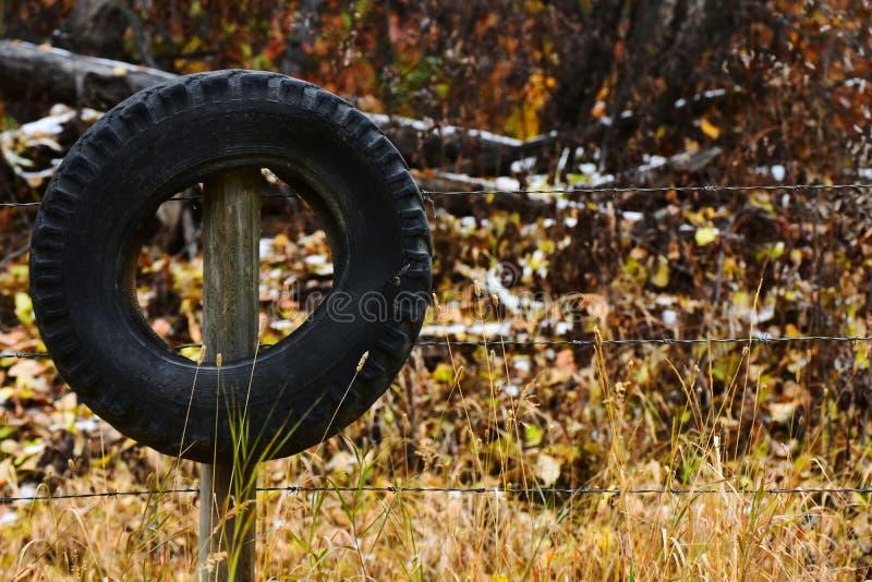 Un neumático usado imágenes de archivo libres de regalías