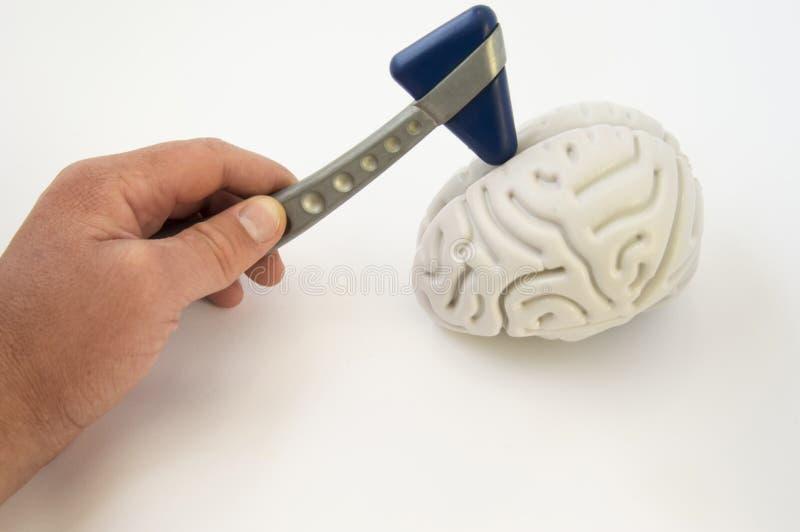 Un neurólogo, sosteniendo un martillo neurológico, conduce los exámenes del cerebro La idea para el examen del paciente o de la a imagen de archivo libre de regalías