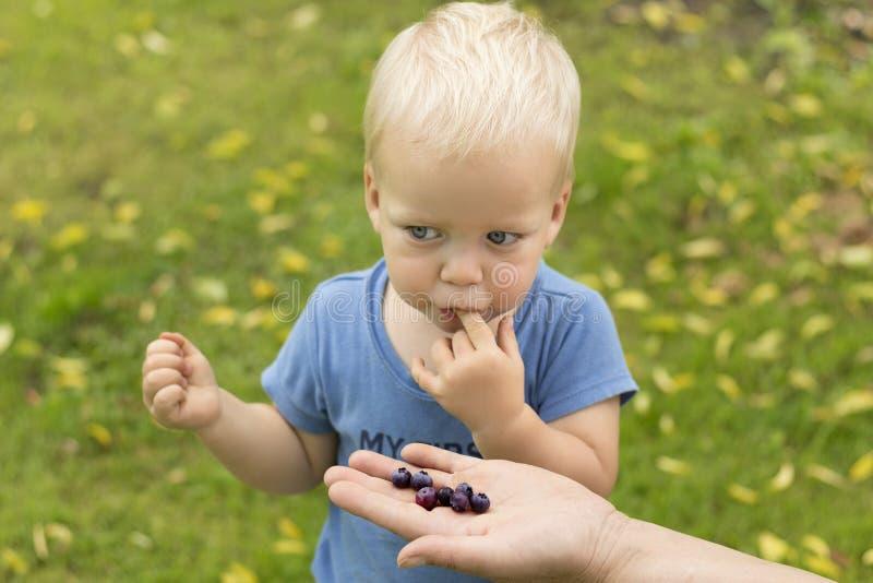 Un niño lindo del año que come el arándano Madre que alimenta a su hijo con los arándanos fotografía de archivo libre de regalías