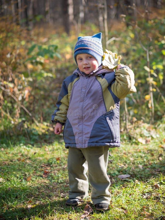 Un niño pequeño lanza las hojas en parque del otoño imágenes de archivo libres de regalías