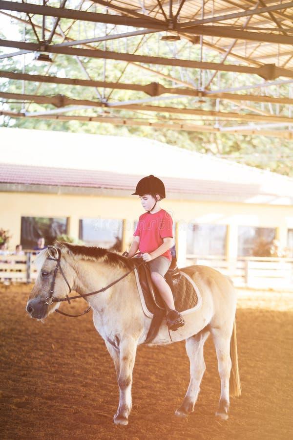 Un niño pequeño que monta un caballo Primeras lecciones de la equitación fotos de archivo libres de regalías