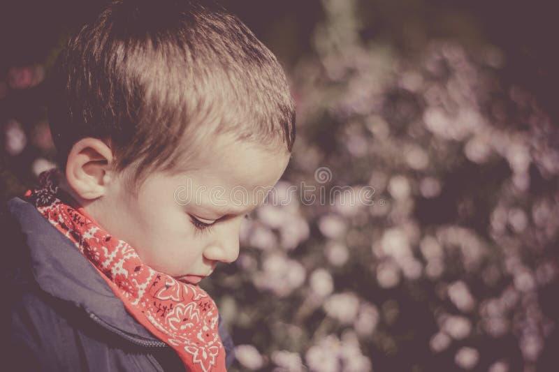 Un niño pequeño que se inclina en una cerca en el parque Autumn Colors fotos de archivo