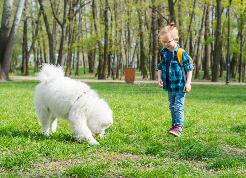 Un ni?o peque?o con los vidrios juega una bola con un perro blanco fotos de archivo