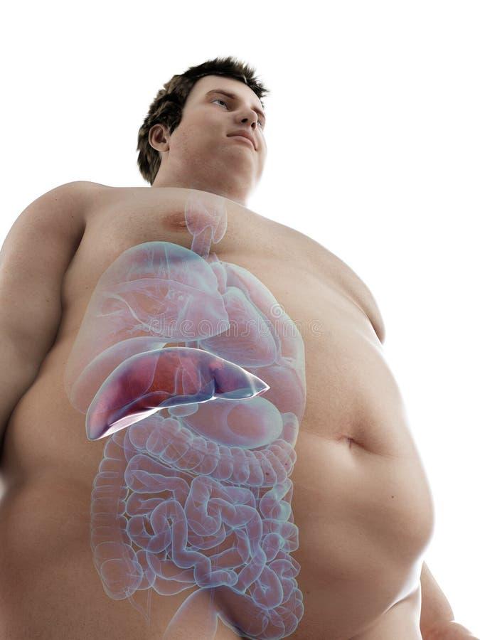 un obeso sirve el hígado stock de ilustración
