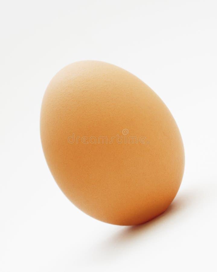 Download Un oeuf photo stock. Image du albumen, oiseau, ovale, poulet - 8657728