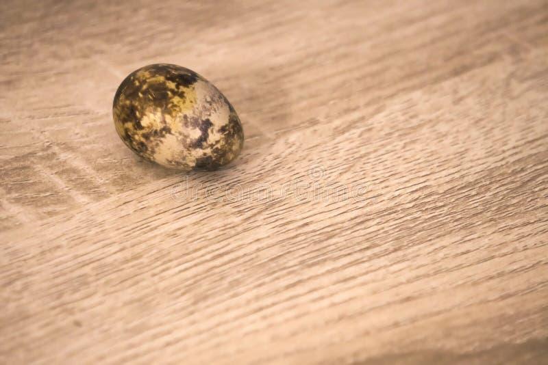 Un oeuf de caille simple sur un fond de conseil en bois photos libres de droits