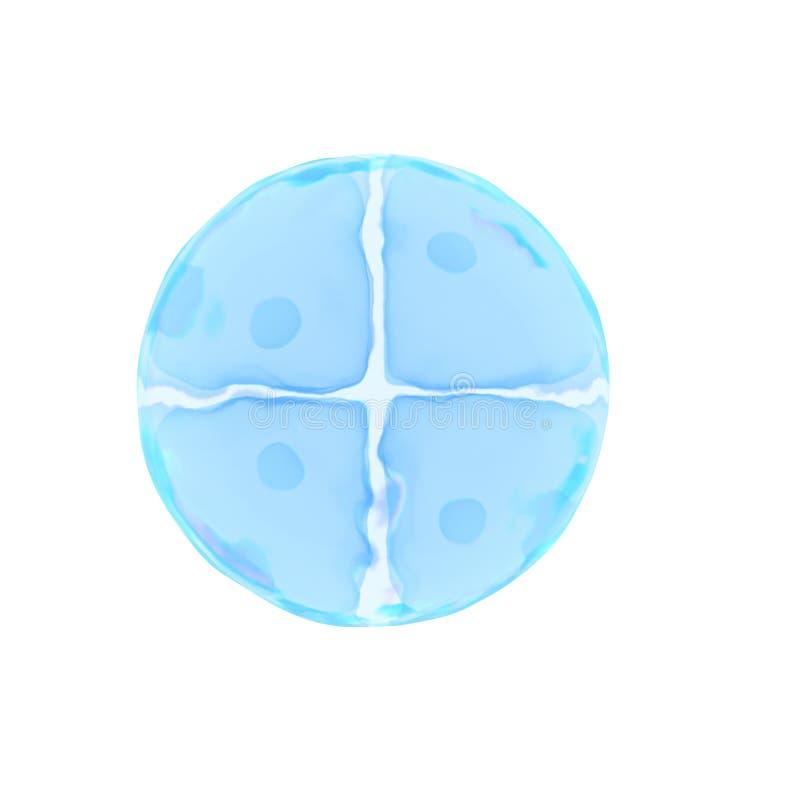 Un oeuf de 4 cellules illustration de vecteur
