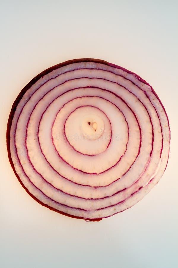 Un oignon rouge coupé en tranches dans le contre-jour images libres de droits