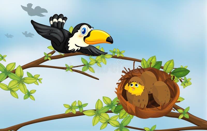 Un oiseau et son emboîtement illustration libre de droits