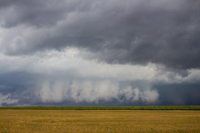 Un orage de supercell avec un bas nuage de mur accrochant apparaît indistinctement sur l'horizon au-dessus d'un champ de maïs photographie stock