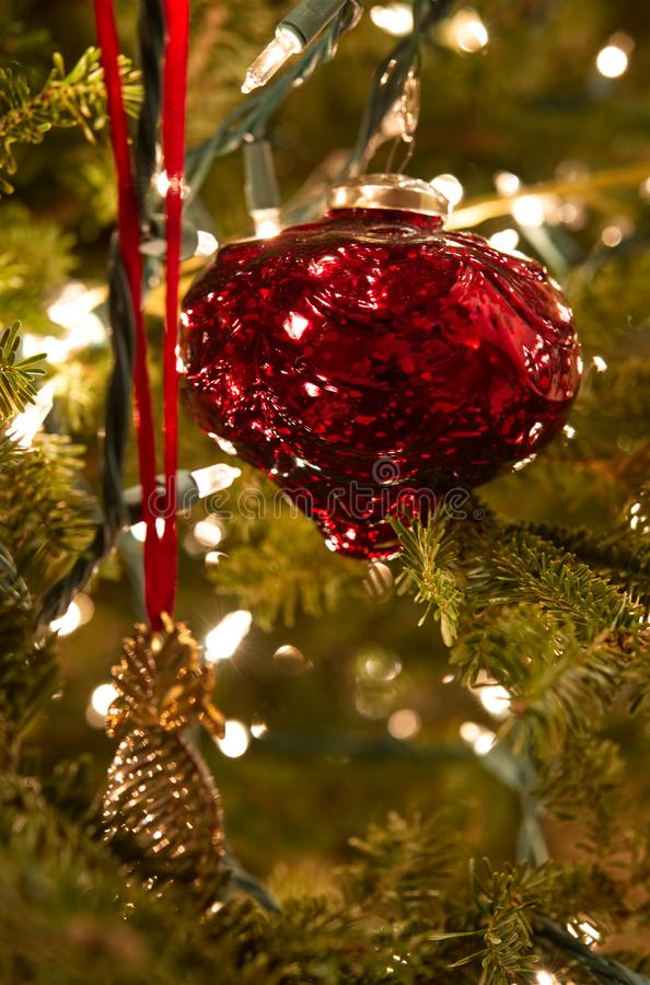 Un ornamento rojo y una piña del oro en un árbol de navidad imagen de archivo libre de regalías