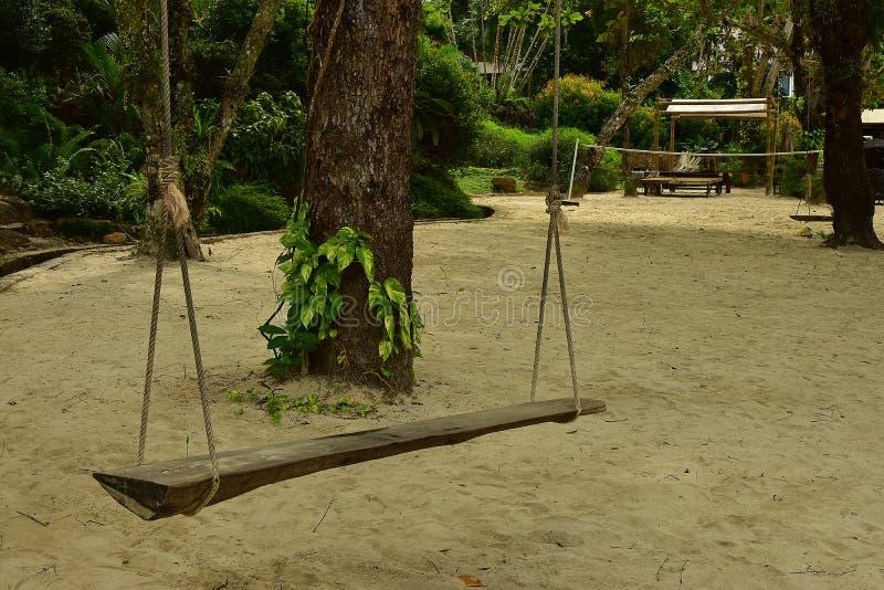 Un oscilación de madera del vintage cerca del árbol grande en la playa de la arena imagen de archivo libre de regalías