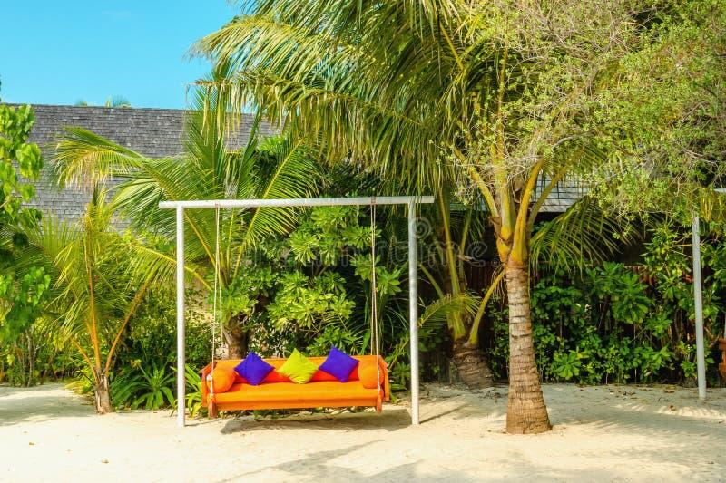 Un'oscillazione contro il contesto di un paesaggio esotico della palma su una delle isole delle Maldive fotografia stock