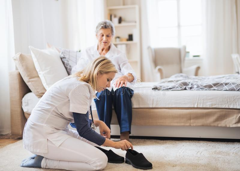 Un ospite di salute che mette sulle pantofole su una donna senior a casa al tempo di Natale fotografia stock libera da diritti