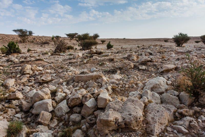 Un oued près d'Abu Jifan Fort, province de Riyadh, Arabie Saoudite images libres de droits