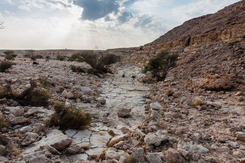 Un oued pr?s d'Abu Jifan Fort, province de Riyadh, Arabie Saoudite photographie stock libre de droits