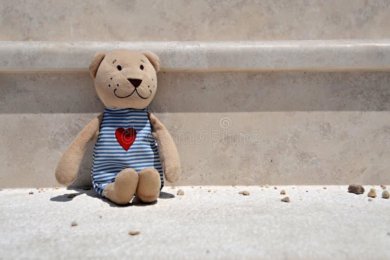 Un ours de nounours seul de peluche image libre de droits
