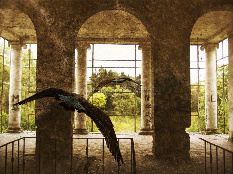 Un pájaro en las ruinas imagen de archivo
