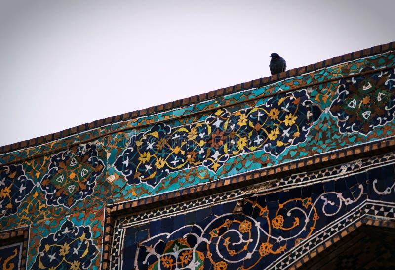 Un pájaro en una pared bulding del Islam colorido antiguo histórico, Bukhara, Uzbekistán fotografía de archivo