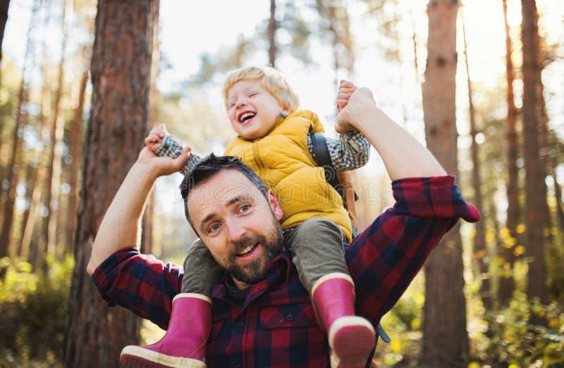 Un père mûr donnant à un fils d'enfant en bas âge un tour de ferroutage dans une forêt d'automne photographie stock