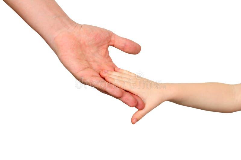 Un père tient la main d'un petit enfant sur un fond blanc photographie stock
