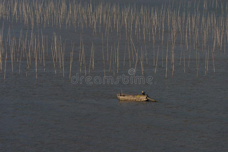 Un pêcheur passant par la zone intertidale côtière de Xiapu images libres de droits
