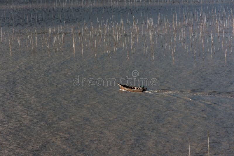 Un pêcheur passant par la zone intertidale côtière de Xiapu photo libre de droits