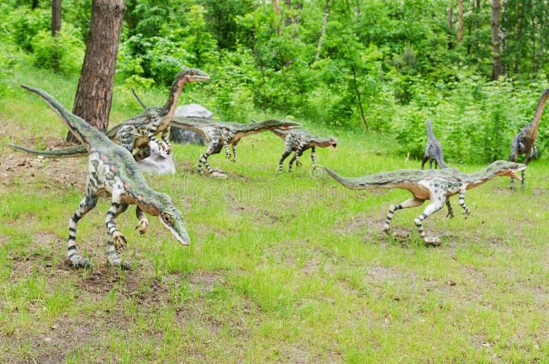 Un pacchetto di coelophysis dei dinosauri, modelli, ricostruzione immagini stock