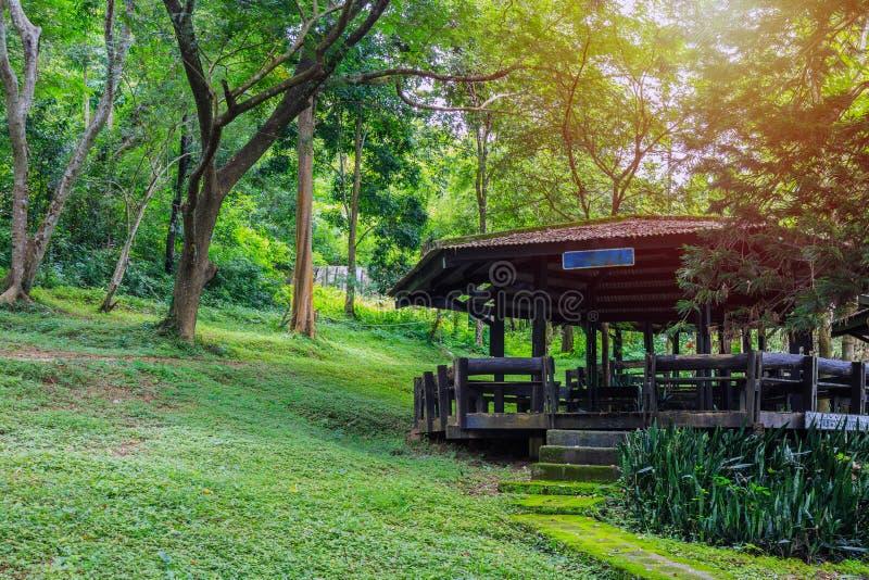 Un padiglione di legno in parco nazionale fotografia stock