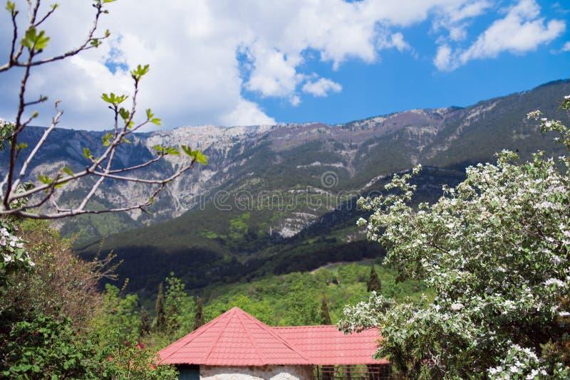 Un paesaggio della molla con una casa e di melo di fioritura immagini stock