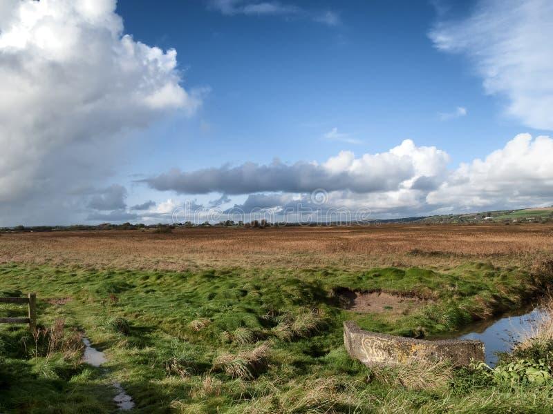 Un paesaggio irlandese con un prato e una corrente che lo passano fotografia stock
