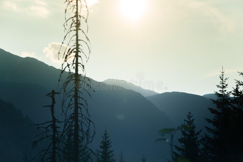 Un paesaggio vago e nebbioso dell'montagne vicino al tramonto Flasre di Sun e sguardo nebbioso nei toni blu Paesaggio della monta fotografie stock
