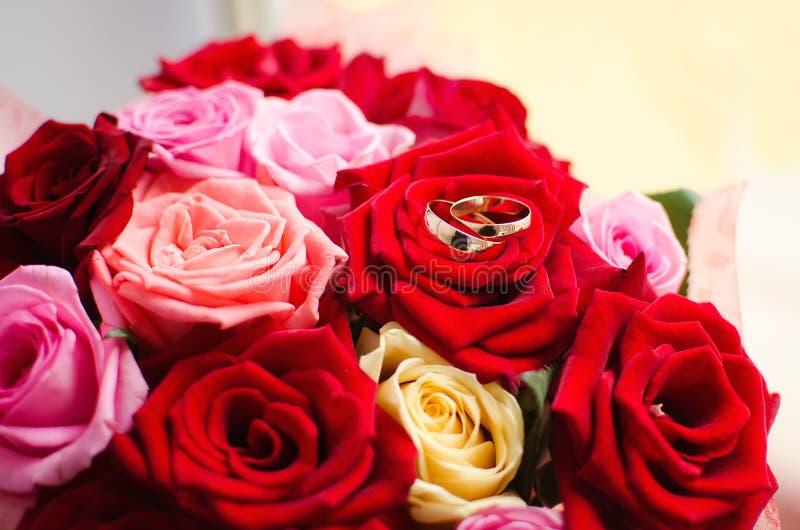 Un paio delle fedi nuziali dell'oro riposa sulle rose rosse Decorazione di nozze, un simbolo di amore e lealtà fotografia stock libera da diritti